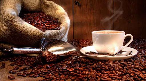 Taza Café Oaxaqueño y granos de café