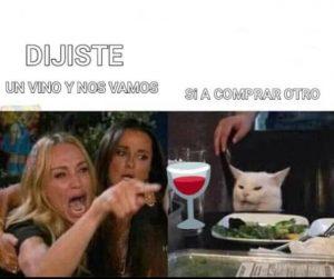meme gato que reclama, quiere más vino