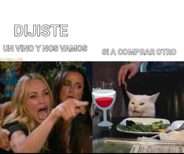 meme de vino, gato en la mesa